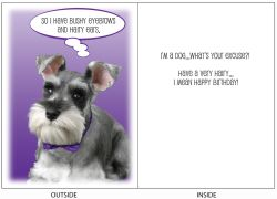 DogTales4You - Harry Brows Card-BIRTHDAY-#59 - 5x7 Inch