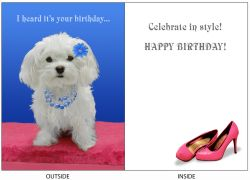 DogTales4You - Classy Chloe Card-BIRTHDAY-#32 - 5x7 Inch