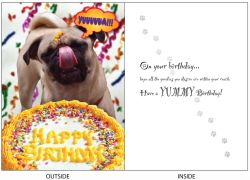 DogTales4You - Pug Tongue Card-BIRTHDAY-#33 - 5x7 Inch