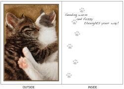 DogTales4You - Cat Hug Card-FRIENDSHIP-#53 - 5x7 Inch