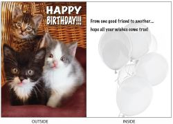 DogTales4You - Midi-Eclipse-Zena Card #52 - 5x7 Inch