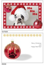 DogTales4You - Chance XMAS Hat Card #40- 5x7 Inch