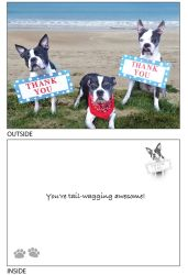 DogTales4You - Pups Thank You Card #41 - 5x7 Inch