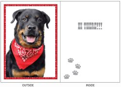 DogTales4You - Harley Scarf Card-FRIENDSHIP-#46 - 5x7 Inch