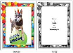 DogTales4You - Able Ball Card-BIRTHDAY-#43 - 5x7 Inch