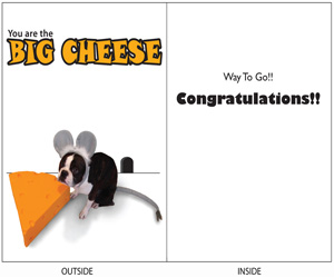 DogTales4You - Max Mouse Congrats Card #1 - 5x7 Inch