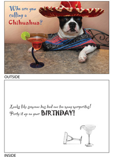 DogTales4You - Pablo Margarita Card-BIRTHDAY-#2 - 5x7 Inch