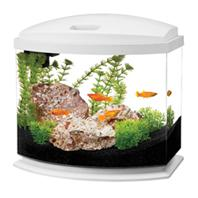 All Glass Aquarium - Aqueon Led Minibow Aquarium Kit - White - 5 Gallon