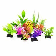Aquatop Aquatic Supplies - Profit Power Pack Plants - Assorted - 3 Inch/12 Pack