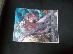 Fine Crafts - Wooden Octopus Jigsaw Puzzle