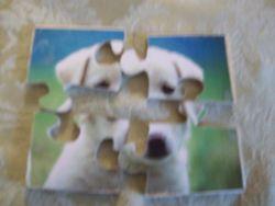 Fine Crafts - White Labrador Retriever Puppy Jigsaw Puzzle