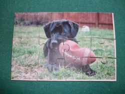 Fine Crafts - Black Lab Puppy Jigsaw Puzzle