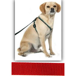 EZ X Harness - Solid Red EZ X Harness - Small (20-30 lbs)