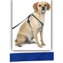 EZ X Harness - Solid Blue EZ X Harness - Small (20-30 lbs)