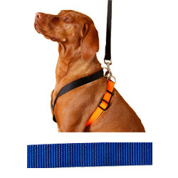 EZ X Harness - Solid Blue EZ X Harness - Medium  (30-45 lbs)