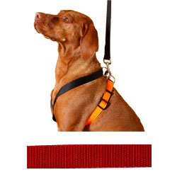 EZ X Harness - Solid Red EZ X Harness - Medium/Large (45-58 lbs)