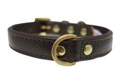 "Angel Pet Supplies - Alpine Leather Padded Dog Collar - Chocolate Brown - 10"" X 1/2"""