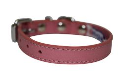 "Angel Pet Supplies - Alpine Leather Padded Dog Collar - Bubblegum Pink - 10"" X 1/2"""