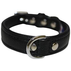 "Angel Pet Supplies - Alpine Leather Padded Dog Collar - Midnight Black - 16"" X 3/4"""