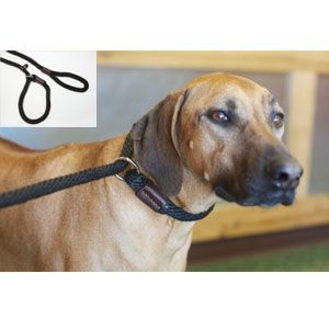 "Purple Pebble - Leedz Slip End Leash - Black - 5/8"" Diameter"
