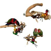 A&E Cage Company - Java Wood Branch Bird Toy - Assorted - Small