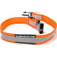 Dog Not Gone - Reflective Collar - Orange - Large/24 Inch