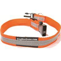 Dog Not Gone - Reflective Dog Collar - Orange - Medium