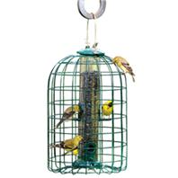 Audubon/Woodlink - Squirrel Proof Feeder - Green - 1.25 Lb