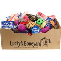 Petsport - Luckys Boneyard Tear Away Carton Display - Assorted - 60 Piece
