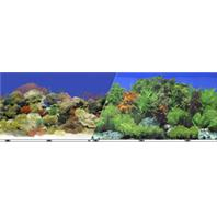 Blue Ribbon Pet Products - Double-Sided Garden/Carribbean Coral Background -  Multi 24 Inch
