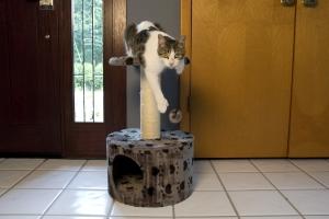 Iconic Pet - Paw Print Sisal Cat Scratching Condo - Grey