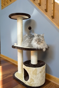 Iconic Pet - Three Tier Cat Tree Condo with multiple Posts - Beige/Brown