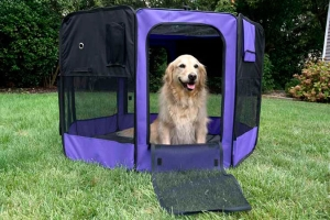 Iconic Pet - Portable Pet Soft Play Pen - Purple - Medium