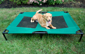 Iconic Pet - The Lazy Pet Cot - Dark Green - Large
