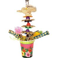 A&E Cage Company - Happy Beaks Tropic Punch Cocktail - Multicolored