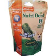 Nylabone - Nutri Dent Brush - Medium/8 Pack