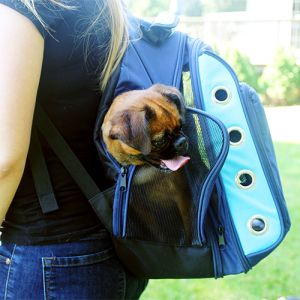 Iconic Pet - FurryGo Luxury Backpack Pet Carrier with Lounge - Navy Blue