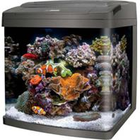 Aqueon Products - Glass - Coralife Bio Cube Led Aquarium