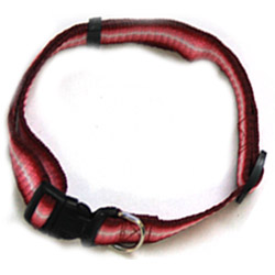 Rainbow Adjustable Collar - Red - 0.78 x 15.7/21.6 Inch