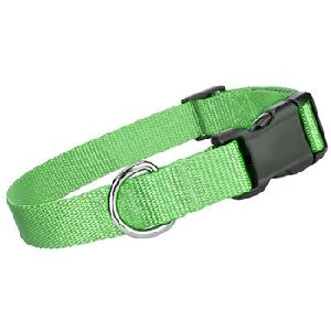 Parisian Pet Nylon Collar Green-Medium