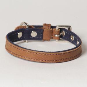 "Hound?s Best - X-Small Canvas Leather Dog Collar ""Indigo"""