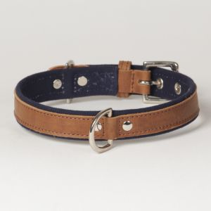 "Hound?s Best - Medium Canvas Leather Dog Collar ""Indigo"""