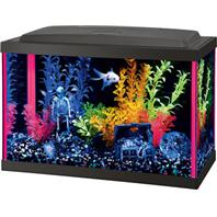 Aqueon Products - Glass - Aqueon Neoglow Aquarium Kit Rectangle - Pink - 5.5 Gallon