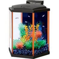 Aqueon Products - Glass - Aqueon Neoglow Aquarium Kit Hexagon - Orange - 8 Gallon