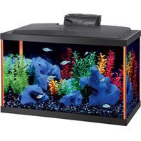 Aqueon Products - Glass - Aqueon Neoglow Aquarium Kit Rectangle - Orange - 10 Gallon