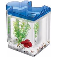 Aqueon Products - Glass - Betta Puzzle Kit - Blue - .5 Gal