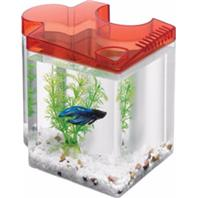 Aqueon Products - Glass - Betta Puzzle Kit - Red - .5 Gal