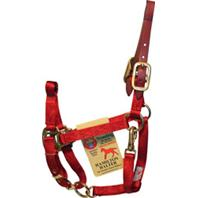 Hamilton Halter Company - Halter With Leather Weanling - Red - 200/300