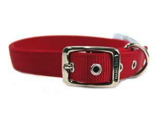 Hamilton Pet - Deluxe Double Thick Nylon Dog Collar - Red - 1 Inch x 24 Inch