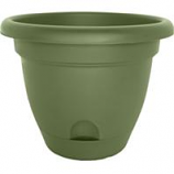 Bloem - Lucca Planter - Living Green - 10 Inch